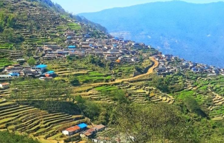 पर्यटकीय गाउँ ताङतिङमा वनभोजस्थल
