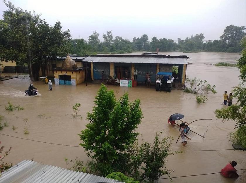वर्षाका कारण धनगढी आसपासका क्षेत्र जलमग्न