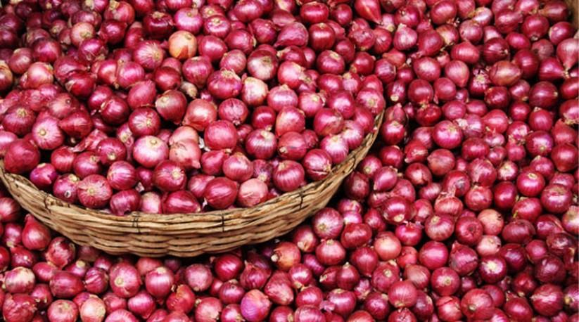 बजार अनुगमनबाट बरामद प्याज खाद्य कम्पनीले बिक्री गर्ने